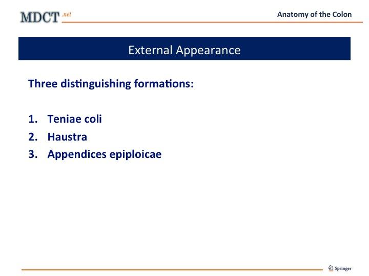 Diapositiva06_B